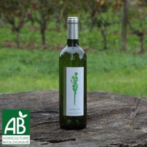 Vin blanc Sec 2018 de Dordogne