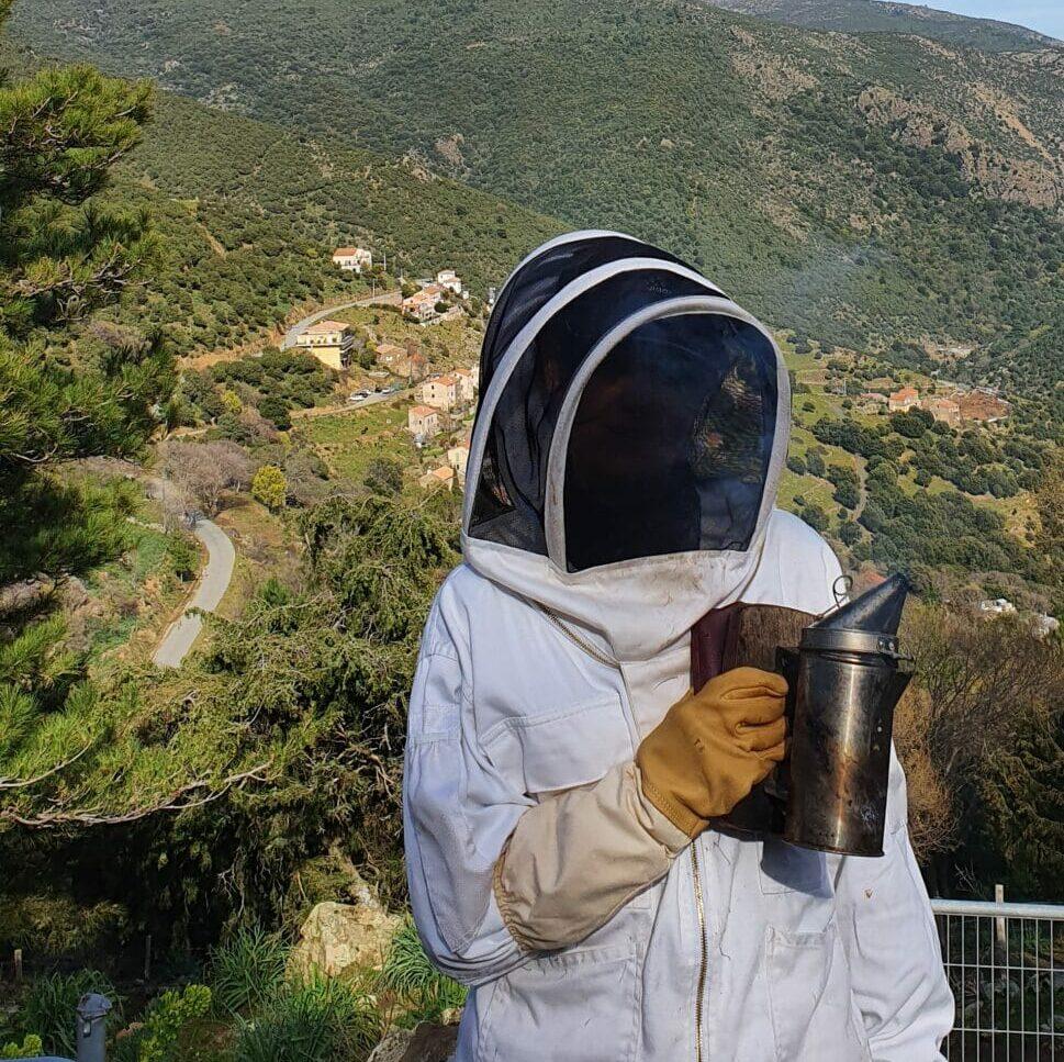Miel d'Asco - u san Francè